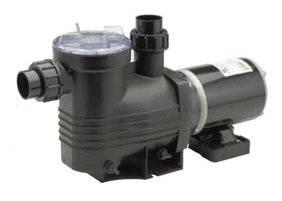 Waterco Supamite Swimming Pool Pump Pool Pump Above